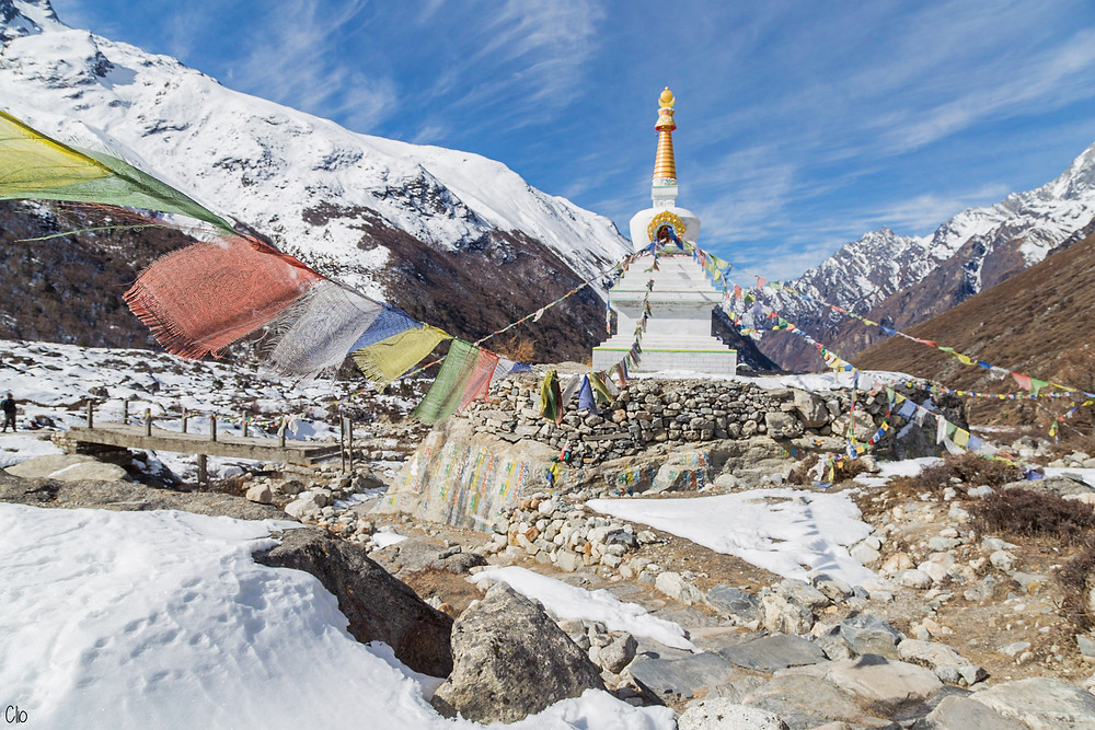 KYANJIN GOMPA-LANGTANT-1MONTH1PROJECT