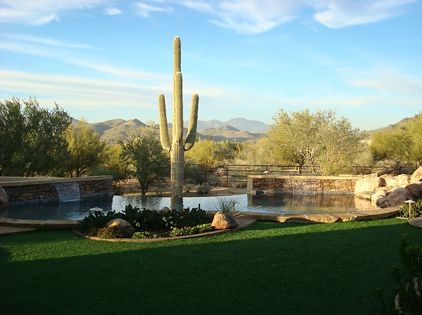 Swimming Pool Remodel in Mesa, Arizona with a Negative Edge an Pebble Sheen with a Saquaro Cactus and Two Sheer Descent Water Features