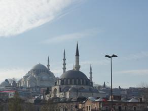 チューリップはトルコの国花|トプカプ宮殿の至宝