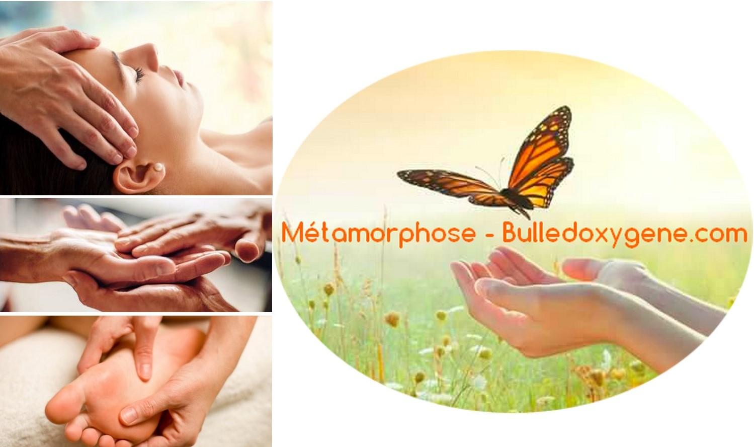 Métamorphose - Bulledoxygene.com