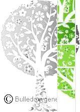 Relaxologie arbre color.jpg