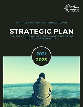 Strategic Plan 2021-2025 cover.jpg