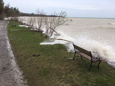 Lake Ontario shoreline.jpg