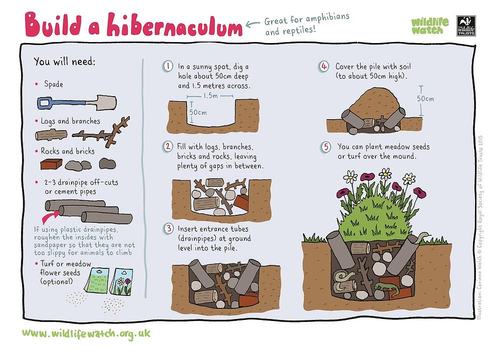 How to build a hibernaculum.