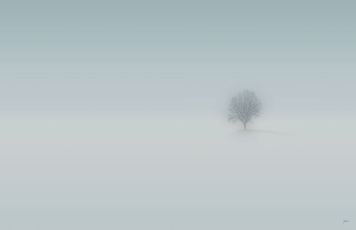 Solitare-34x22-.jpg