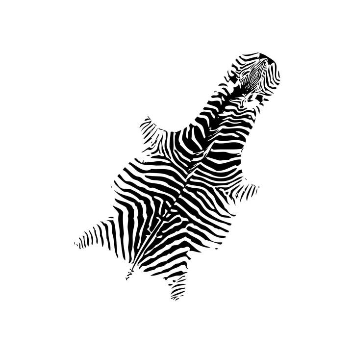 6_Zoopol_Zebra.jpg