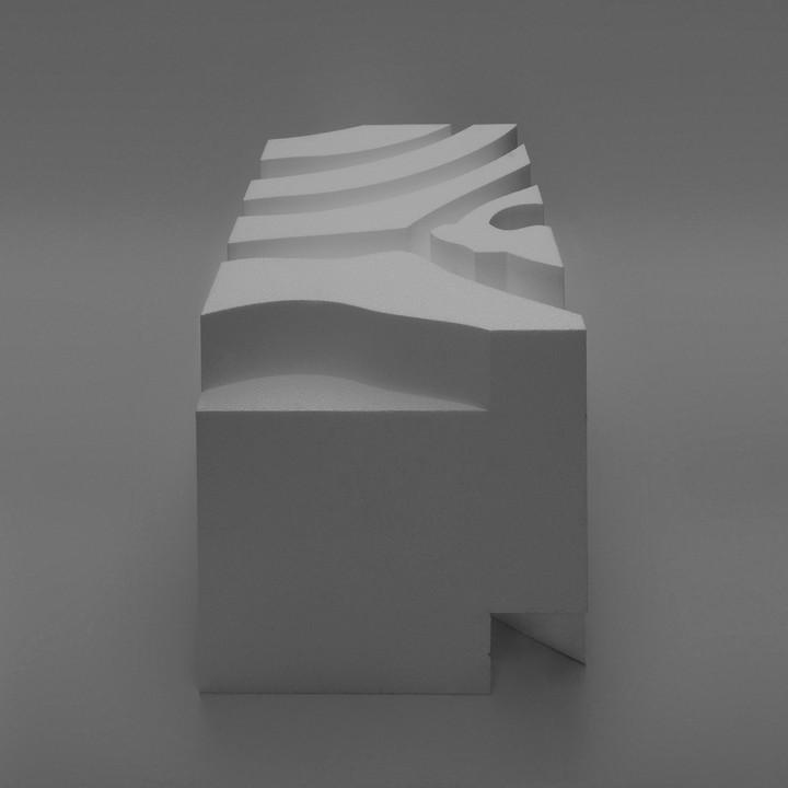 8_Zoopol_Zebra model.jpg