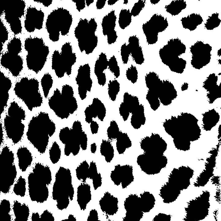 2_Zoopol_Panthera.jpg