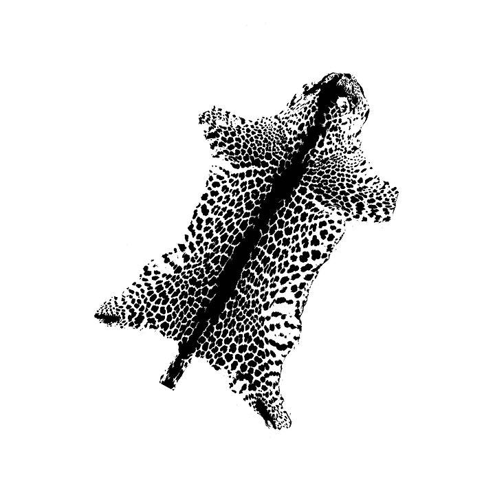 1_Zoopol_Panthera.jpg