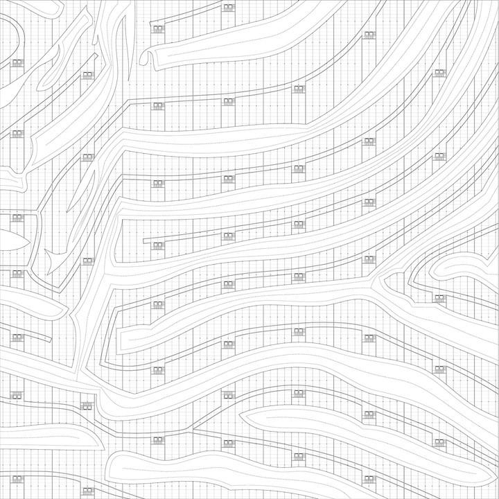 9_Zoopol_zebra drawing.jpg