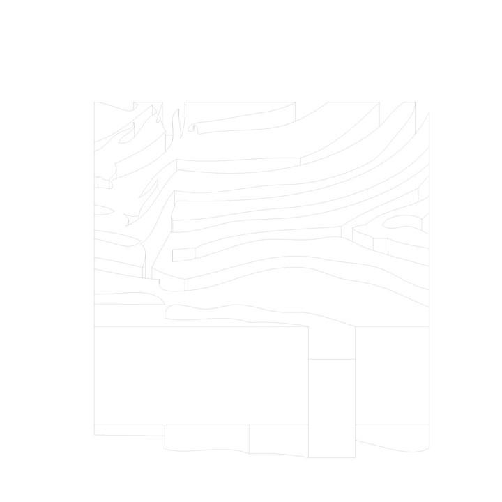 10_Zoopol_zebra drawing2.jpg