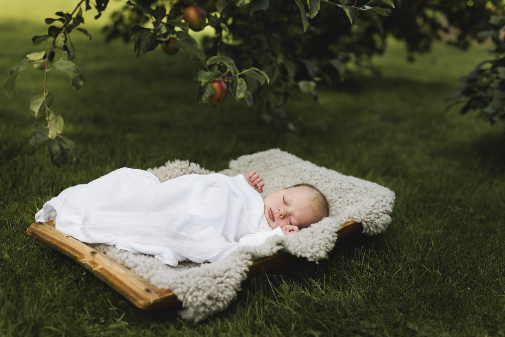 Nyfødtbilder ute