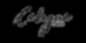 logo%20sans%20fleur_edited.png