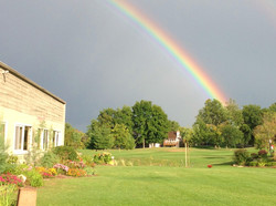 Rose Garden Rainbow
