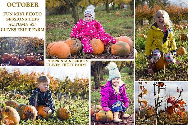 Pumpkin 2020 sm.jpg