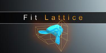 Fit Lattice