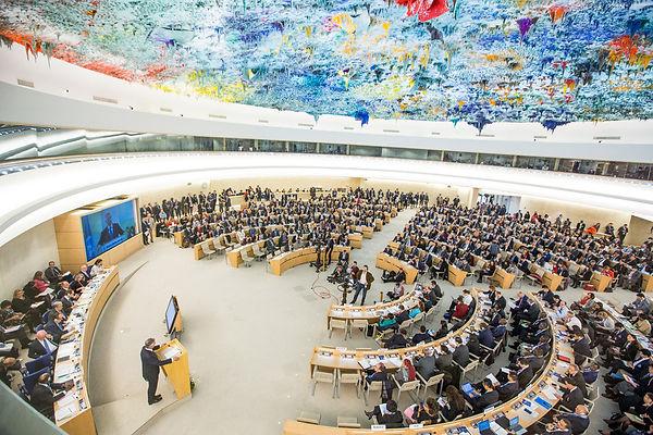 Human Rights Council.jpg