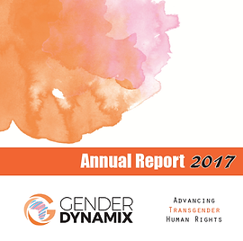 GDX_AnnualReport2017_Cover.png