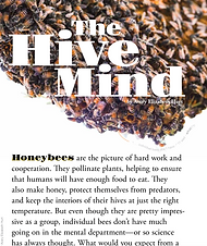 Hive Mind cover narrow.png