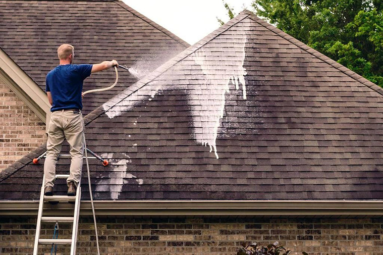 local roof cleaning professionals