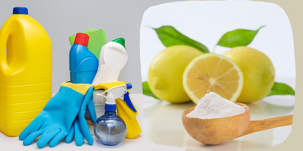 Woche 5 - Vertiefungstraining - Reduzierung von Synthetik und Giftstoffen