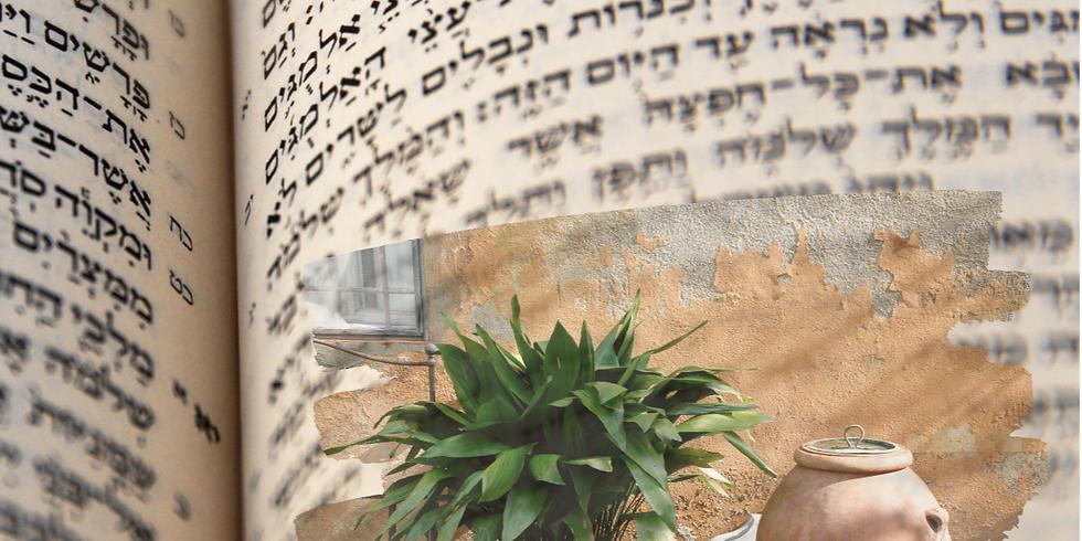 Schnupperkurs - Schönheitsgeheimnisse aus biblischer Zeit