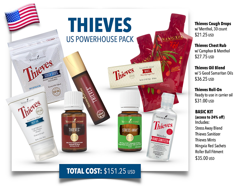Thieves_Powerhouse.US.png