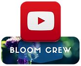 Bloom%20Crew%20YouTube_edited.png