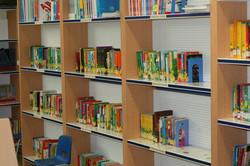 biblioteca-escolar-06