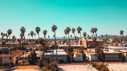 image of Echo Park neighborhood with palm trees