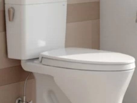 Simple elegant toilet by Kohler !