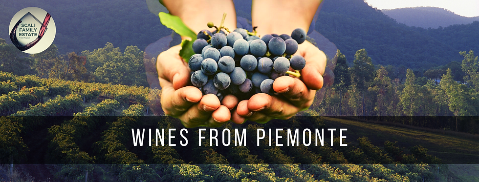 Wines from piemonte.png