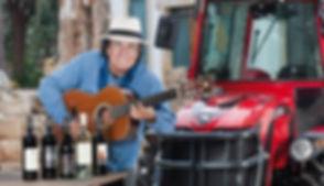albano guitar.jpg