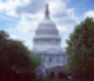US Capitol Building Washington DC | DC Design Tours