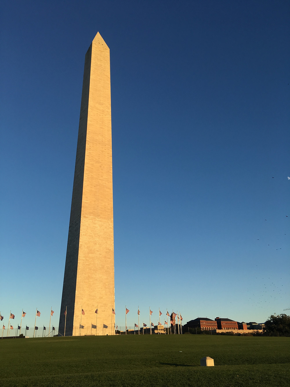 Washington Monument with the Jefferson Pier in the foreground