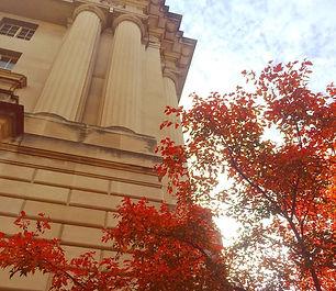 Federal Building Washington DC   DC Design Tours
