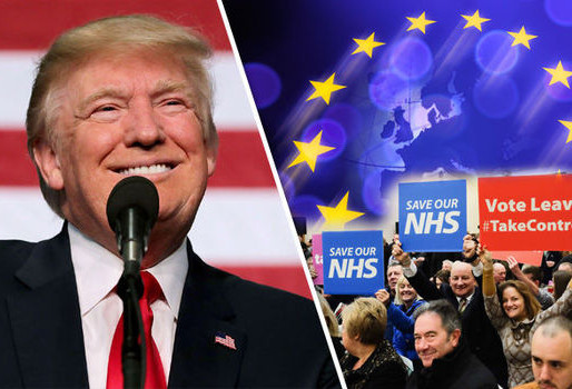 "The EU and the NHS: Debunking the Myths of a ""Trump Brexit"" and Left Remain"