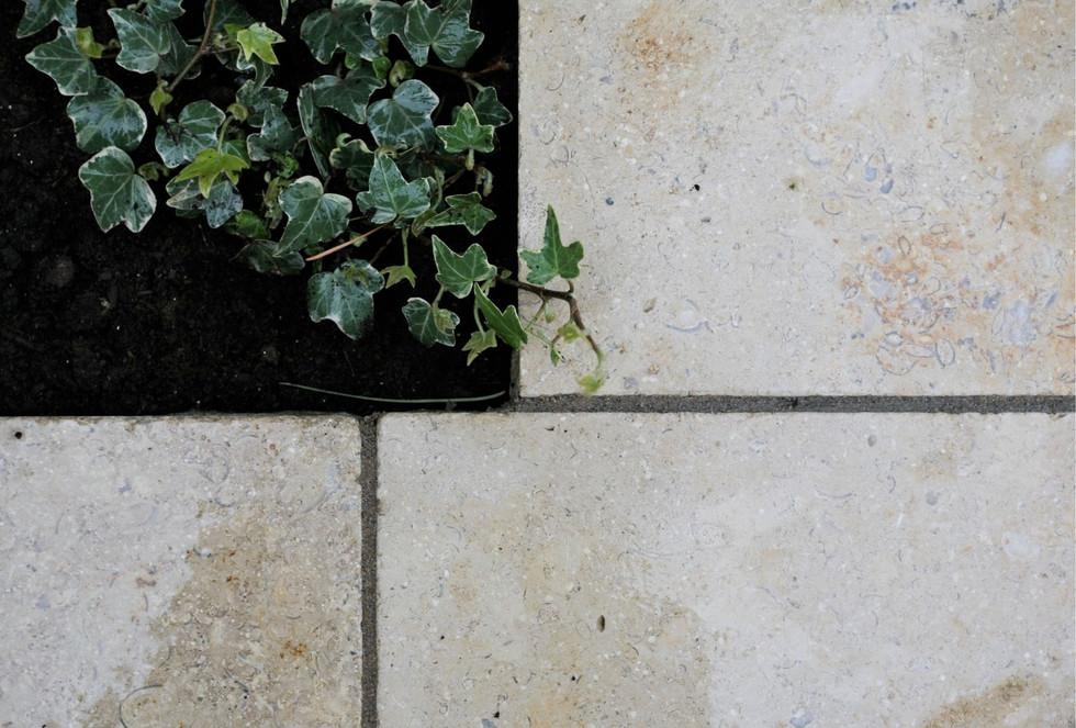 garden designer norfolk 8