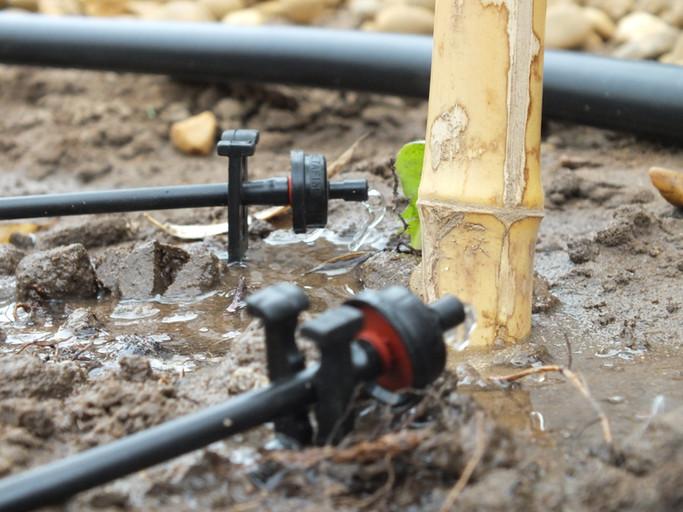 norwich garden irrigation installer