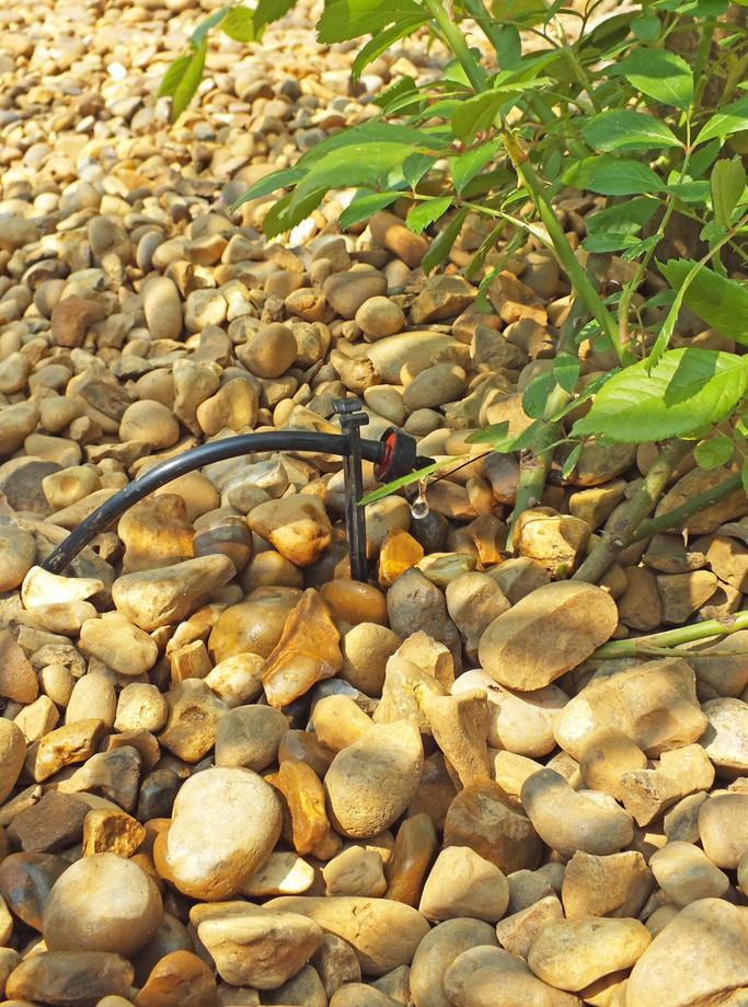 garden irrigation systems norwich norfolk