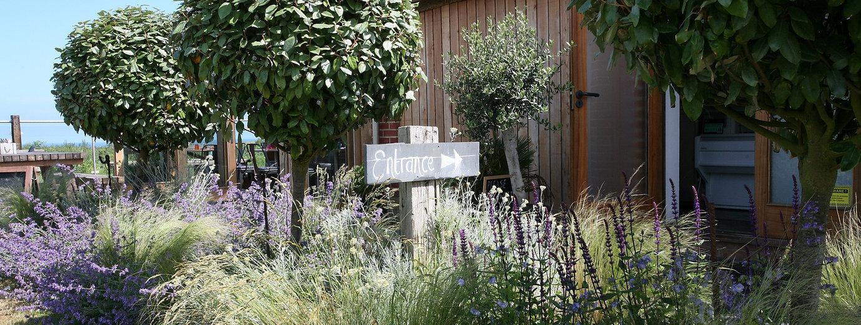 Landscaper & garden designer Norwich Nor