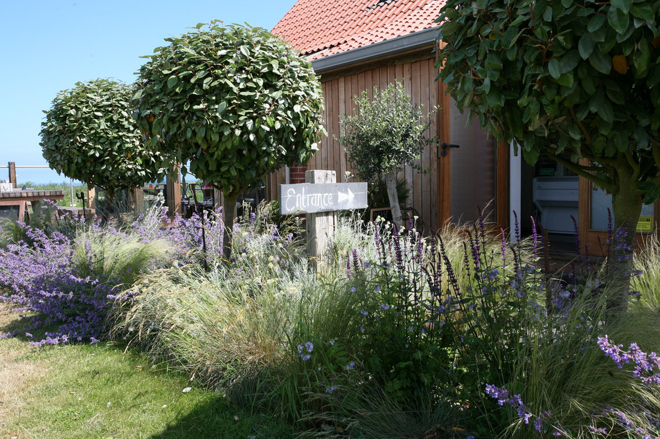 Landscaper & garden designer Norwich North norfolk.jpg