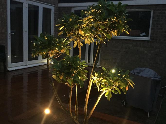 Stainless Steel Hunza Garden spot light