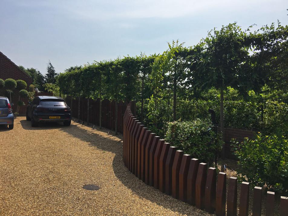 Ekki Fence, Pleached Hedge & Hunza spot lights.jpg