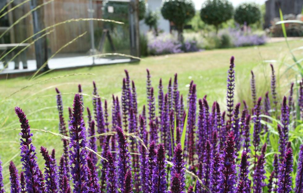 Rocky bottoms garden designer West Runto