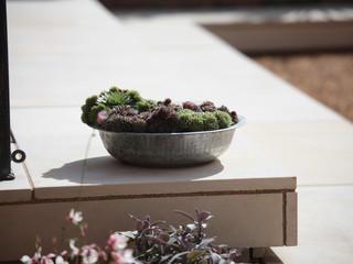 garden designers fakenham