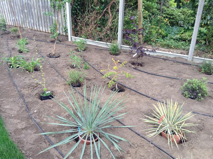 garden plant irrigation systems