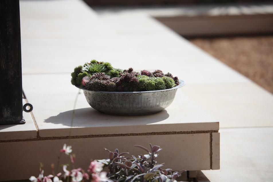 Garden Design Norwich
