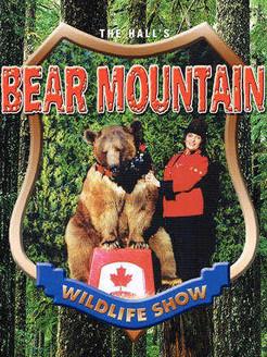 BearMountain1.jpg