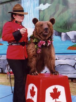 Bear-Mountain.jpg